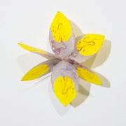 Arctic Ruby Pinwheel