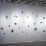 Colorburst Wallflowers
