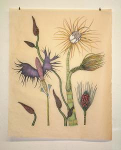 Exotica Botanica State I Print 1